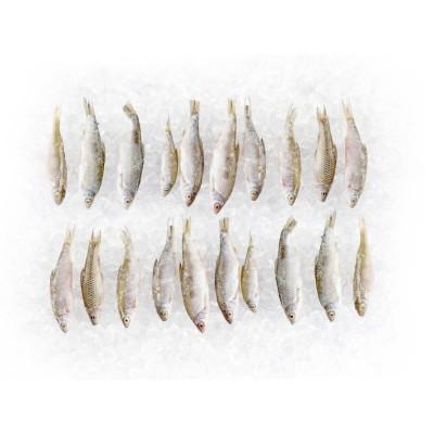 4 x 5 Köderfische 7 - 10cm